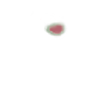 FG_FacialMark_p304_c1_m005.png