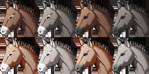 donkey_face_avery.png