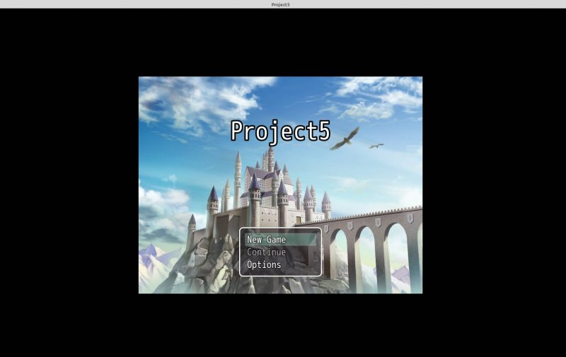 project5.jpg