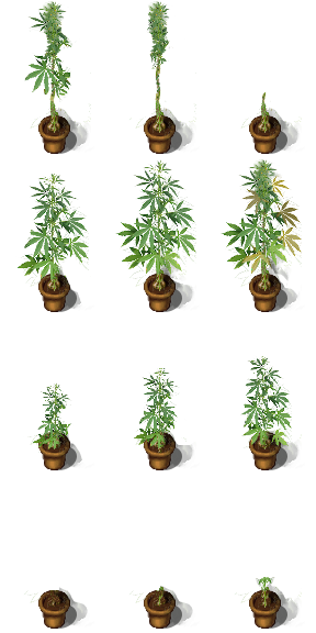 !$House_Plant1.png