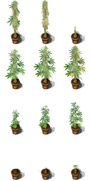 !$House_Plant Extension.png