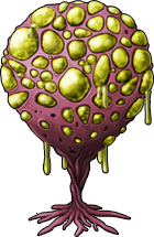 mushroom_15.png