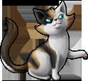 cat_15b.png