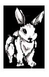 LoS-MV-Rabbit.png