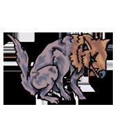 LoS-MV-Wild-Dog.png