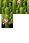 cactus-addons-mv.png