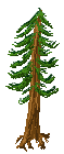 Tree try 1.png