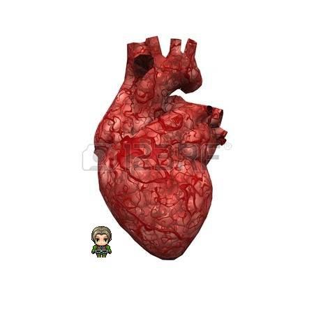 18378530-human-heart.jpg