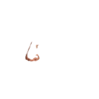 FG_Nose_p18_c1_m001.png