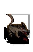 ORIGINAL-RAT.png