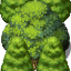 RTP Layered Trees.png