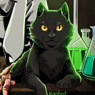 Cat_Dead